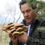 Thumbnail image for Colorado Oyster Mushrooms!