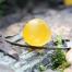 Thumbnail image for Snowbank Mushrooms