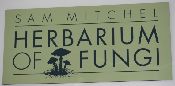 Post image for The Sam Mitchel Herbarium of Fungi